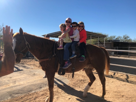 Moose, Appaloosa Gelding for sale in Arizona