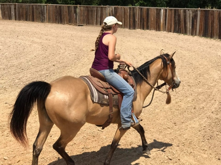 Poco James, American Quarter Horse Gelding for sale in Oregon