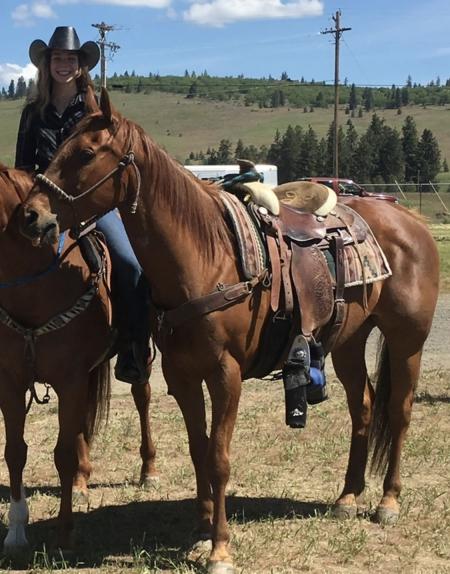 Bandi, Appaloosa Gelding for sale in Washington