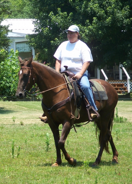 Preacher's Little Red (barn name Jewel), Tennessee Walking Horses Mare for sale in Tennessee