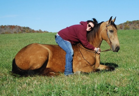 Big Jake , Tennessee Walking Horses Gelding for sale in Kentucky