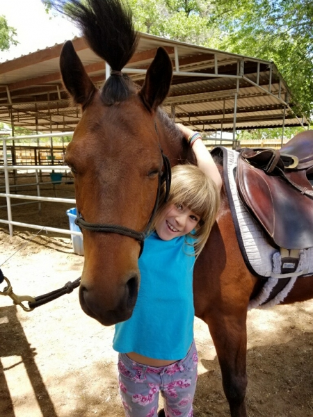 Mighty Mouse, Ponies (All) Gelding for sale in New Mexico