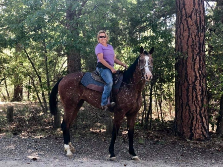 Tessa, Appaloosa Mare for sale in Arizona