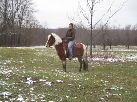 Pipi, Shetland Pony Mare for sale in Michigan
