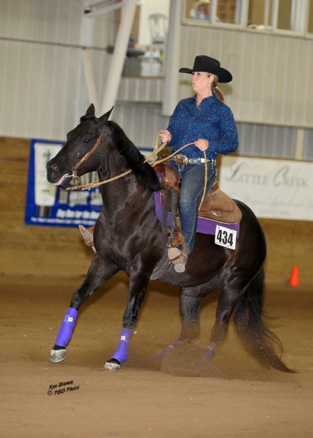 Haidas Apirl Fool, American Quarter Horse Mare for sale in Tennessee