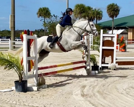 Maybry's Glory, Thoroughbred Mare for sale in Florida