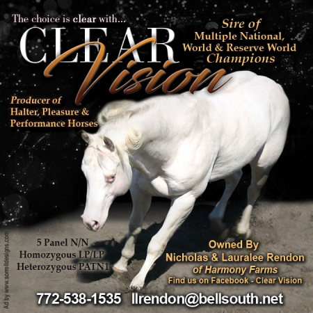 Clearly Dynamic, American Quarter Horse Gelding for sale in Florida