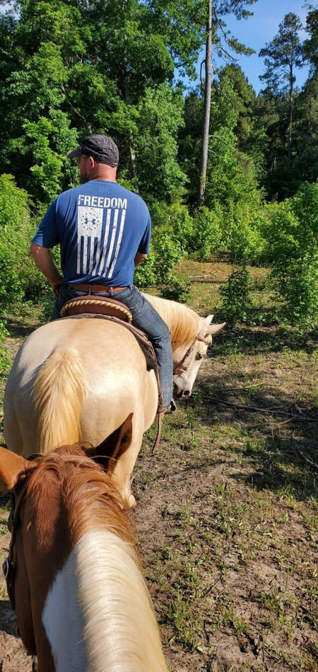 Maverick , American Quarter Horse Gelding for sale in Texas