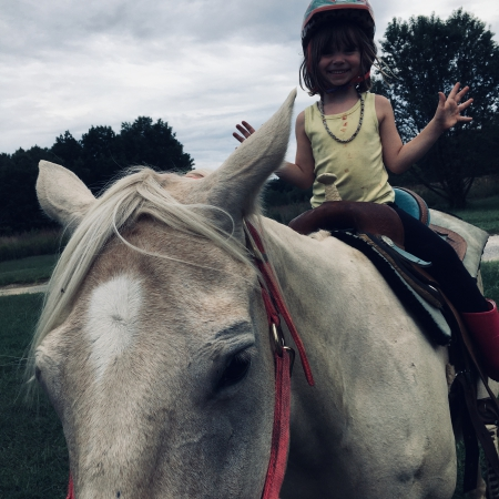 Princess and taffy, Bashkir Mare for sale in Maryland