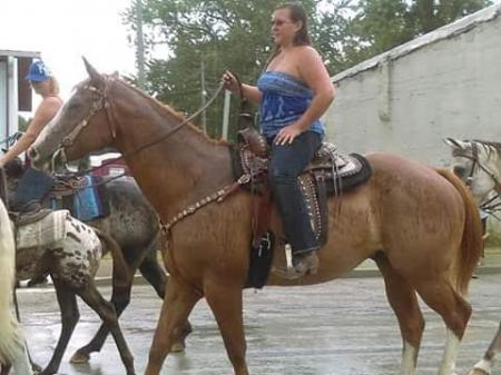 Moose, American Quarter Horse Gelding for sale in Missouri