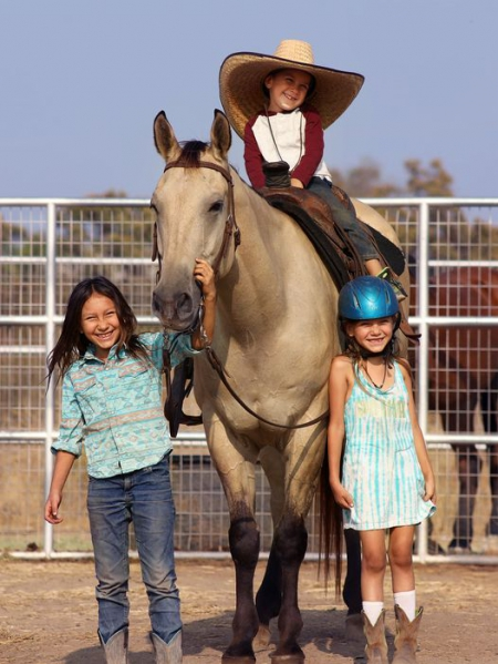 Cabernet - A  Rare Bombproof Dunskin Gelding , Buckskin Gelding for sale in California