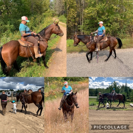 Kenya, American Quarter Horse Mare for sale in Wisconsin