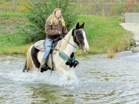 Isha, Spotted Saddle Gelding for sale in Michigan