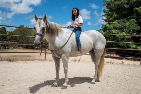 DLT Excalibur, American Quarter Horse Gelding for sale in Hawaii