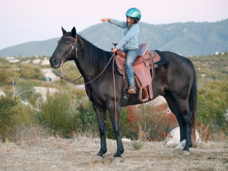 Ceasar of Rancho Bravo, American Quarter Horse Gelding for sale in California