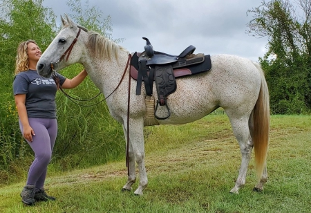 Missy (Miss Doc Otoe), Appendix Quarter Horse Mare for sale in Texas