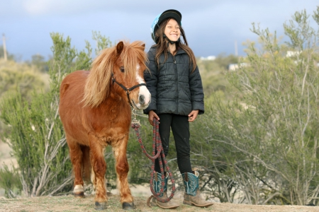 Super Cute Red Pony Gelding for Sale, Ponies Gelding for sale in California