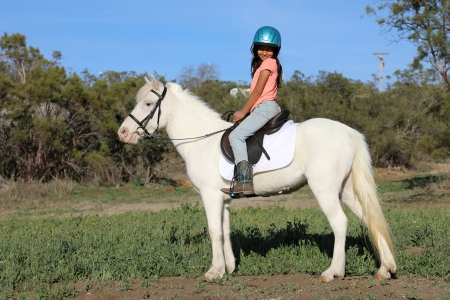 Cali - Fancy and Gentle Cremello Pony Mare for Sale, Ponies Mare for sale in California