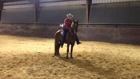 Red Cloud, Mustang Gelding for sale in Texas