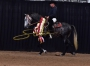 VALIENTE RDL, Andalusian Stallion for sale in Texas