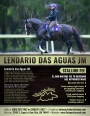 Lendario Das Aguas JM, Mangalarga Stallion at Stud in Oklahoma