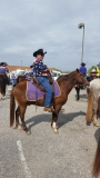 Hombre EZ, Paso Fino Gelding for sale in Louisiana