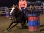 Mr. Buzzie Cash, American Quarter Horse Stallion at Stud in Ohio