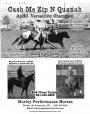 Cash Me Zip N Quanah, Appaloosa Stallion at Stud in Utah
