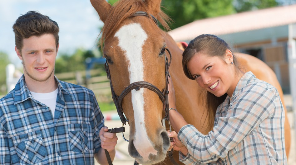 Gifts For Horse Lovers On A Budget? Here's The Best You Can Buy Under $50