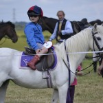 sell-my-horse-for-sale
